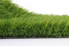 artificial grass Arena