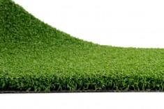 Artificial grass Explore