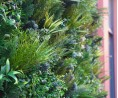 Jardin Vertical - Design 2