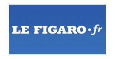Le Figaro.fr - Du gazon synthétique aussi vrai que nature